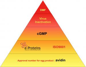 GMP avidin certification